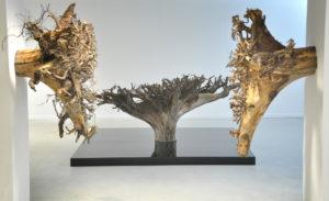 Root Gassan Mohammed